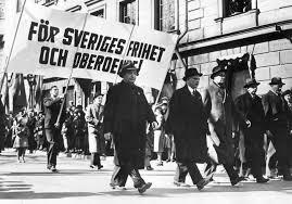Varför behövs Framåt Sverige?